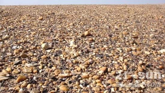 火辣辣的炎阳底下,除了沙砾就是卵石