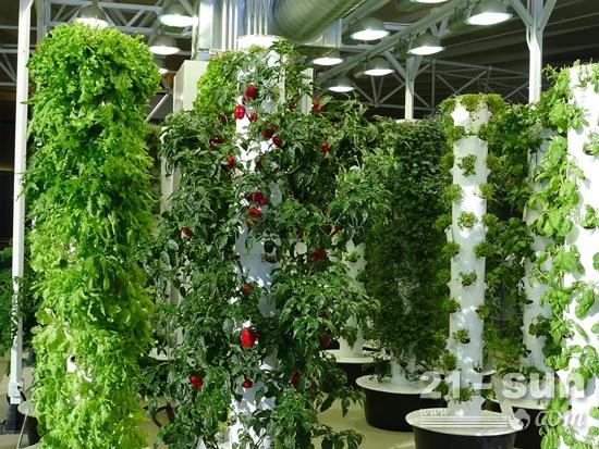 沃尔沃建筑设备积极关注绿色创新