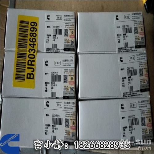 广西柳州康明斯G5317323挖机喷油器QSB