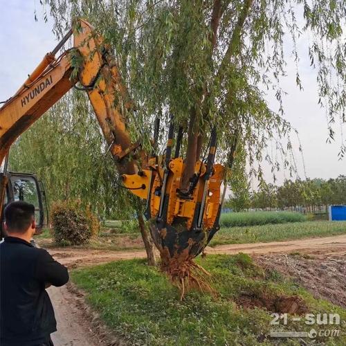 苗木移植 苗木挖树机 移树机挖树机厂家