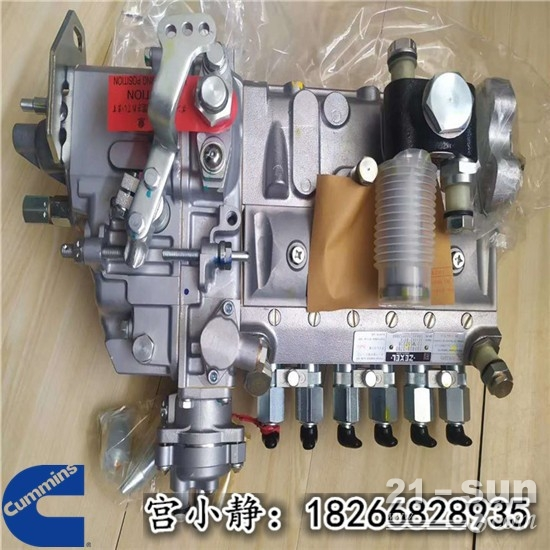 美国康明斯6B5.9高压油泵4063845 燃油泵校验