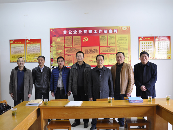 安徽省委组织到永安绿地检查党建工作