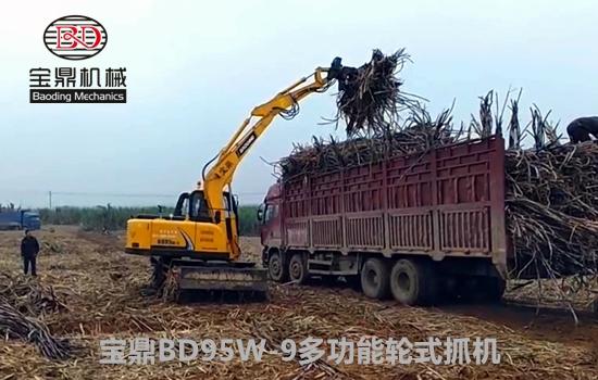 主打多功能抓装性能 宝鼎BD95W-9轮式挖掘机抓木机体验