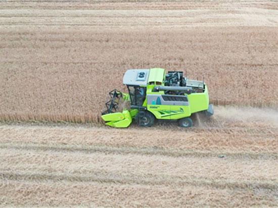 中联重科高端智能农机助力三夏 描绘金黄麦田绿色风景线