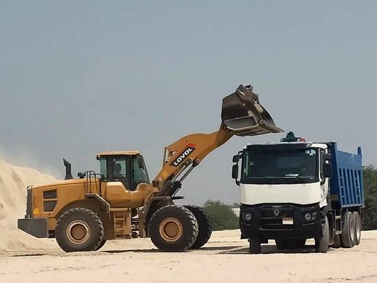线上广交会  雷沃FL976H装载机驰骋海外疆场