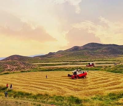 上半年超29%新增用户选择玉柴农业装备动力