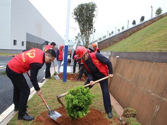 龙马环卫青年志愿者为高陂新厂增绿添彩