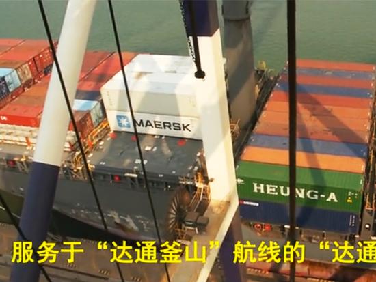 岸桥驾驶舱实拍卸船过程
