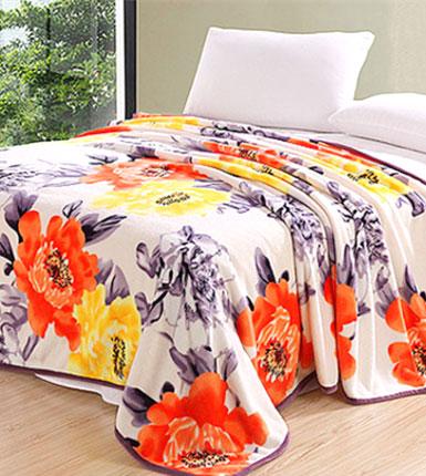 炫彩云貂绒毯空调毯