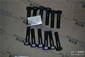 瑞兰斯供应徐工XS142J压路机 螺栓M20×80 805000507