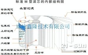 滤油车HG04T-100