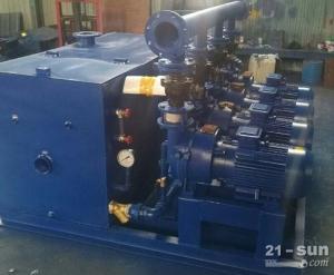 东莞深圳水环真空泵2BV2060 - 2BV2061 可订做水环真空泵站
