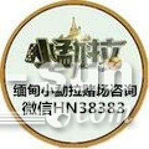 缅甸小勐拉威尼斯18488335272