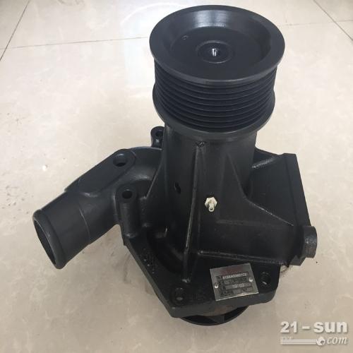 厂家直销潍柴 国三 电喷发动机 水泵  配套装载机 WD610506SB