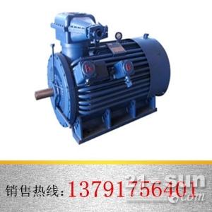 太原专供YB400-450系列高压隔爆型防爆电机