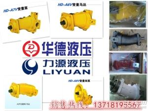 煤矿钻机手动液压泵A7V78MA1RPF00北京华德液压专供西