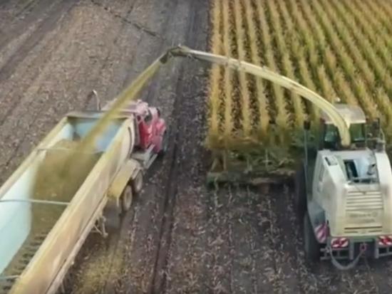 为什么重卡也能在农田中运输青饲料?