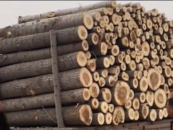 为什么重卡可以以倒车急刹车形式卸车原木?