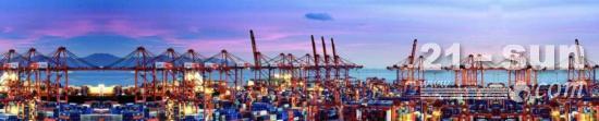 上港集团上半年净利87.18亿 锦江航运业绩亮眼